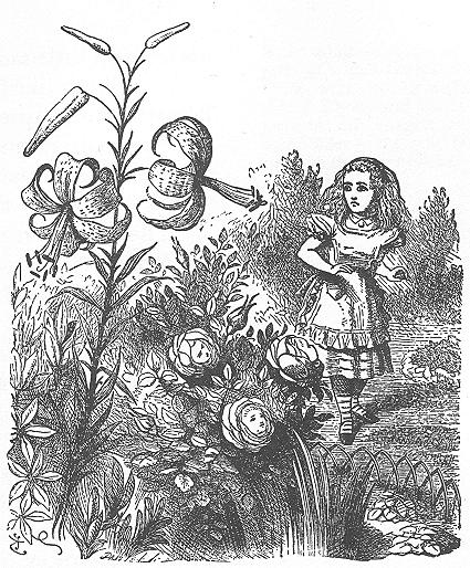 イラスト: 花たちとの会話